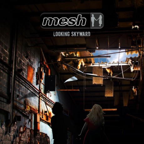 Mesh-LookingSkyward